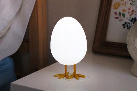 LED Egg Night Light