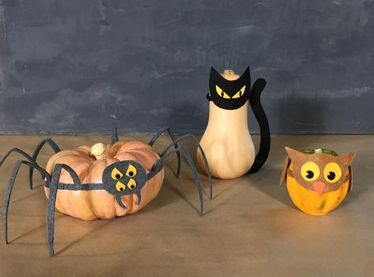 No-Carve Pumpkin Costumes