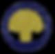 Ortopedica_tarjetas_curvas-1.png