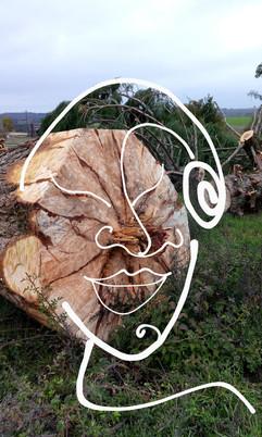 tête de bois des Vosges.jpg
