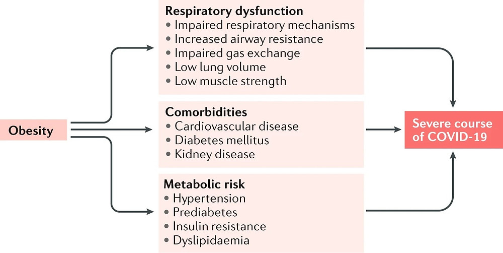 Figure 1: Obesity-related comorbidities and mechanisms of a severe course of COVID-19