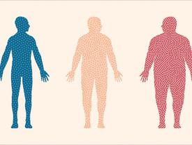 Obesity increases T2DM risk regardless of genetics