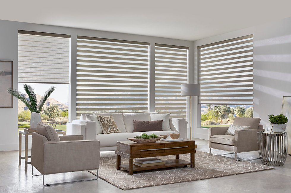 Dual Shade Living Room 2.jpg