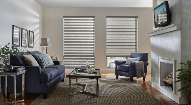 Dual Shade Living Room.jpg