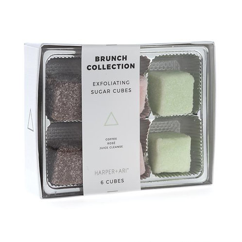 Discovery Kit- Brunch Collection