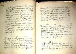 Запись в походном журнале Петра I о закл