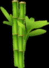 22079e53659f690faaad446468a87a77_bamboo-