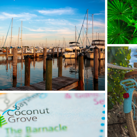 Why Coconut Grove? It Has Every Ingredient for a Great Life