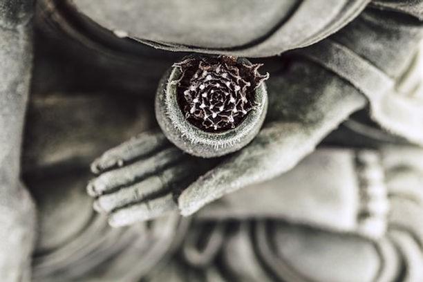 buddha-1287228__340.jpg