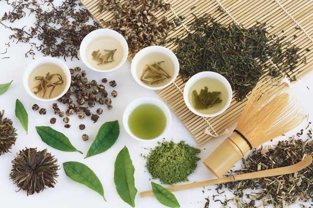 Sulla via del tè - Introduzione