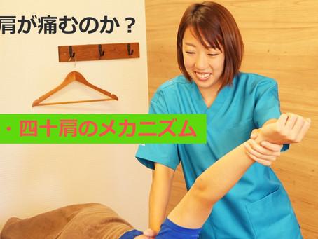 【5分動画】秘技!肩甲骨はがし!