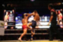 Бирманский бокс.jpg