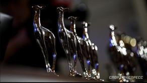 Черно-белое благородство и надежды на олимпийские награды
