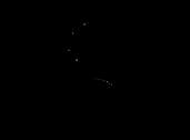 black-logo-web.png