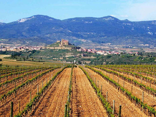 Spanish Wines: 3-2-1                               3 Wines from 2 Regions Profiling 1 Grape
