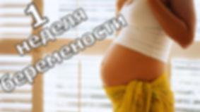 1 неделя беременности.jpg