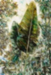 12-길러진-식물-Be-bred-true-to-the-garden-130