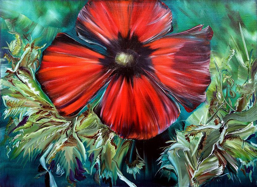 A-poppied-양귀비꽃45cm-x-38cm-oil-on-canvas-