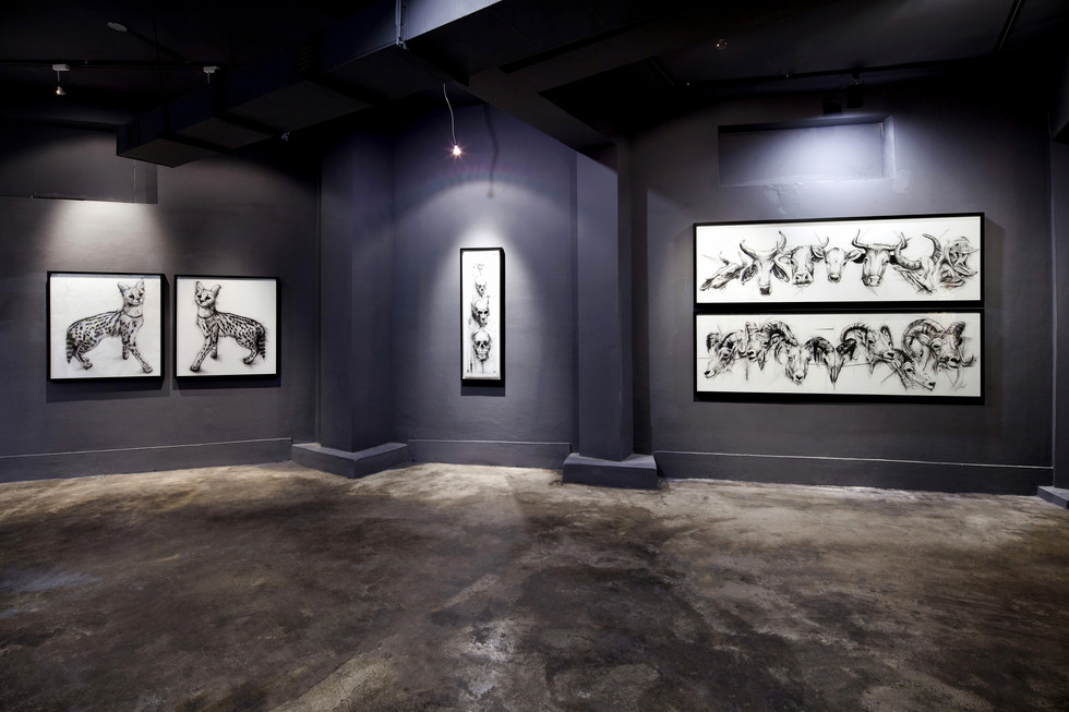 The Rule _ Installation view
