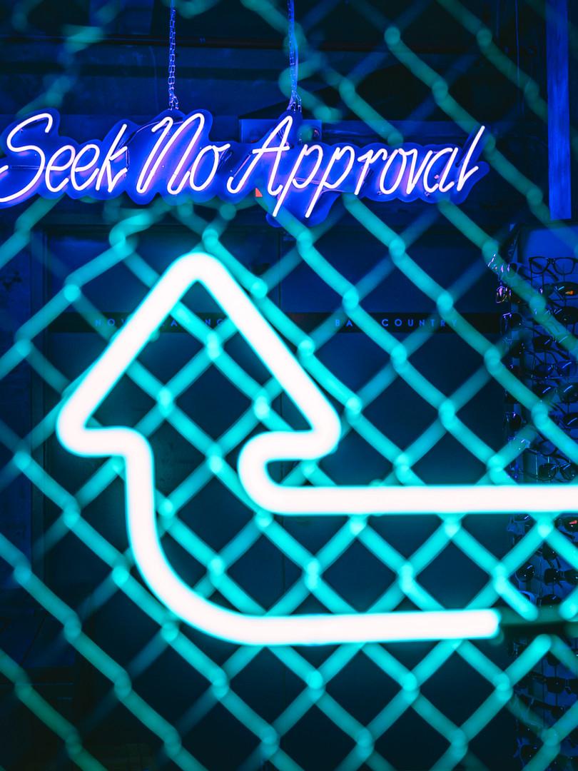 seek no approval new.jpg