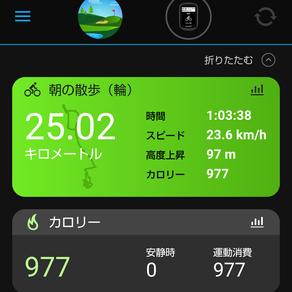 朝のお散歩(輪?)に行ってきました。