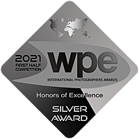 silver(3).png
