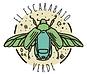 Escarabajo-Verde.png