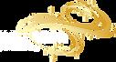 INTERSER LOGO GOLD REVERSE.png