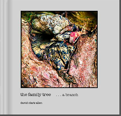 the family tree  . . . a branch - ebook