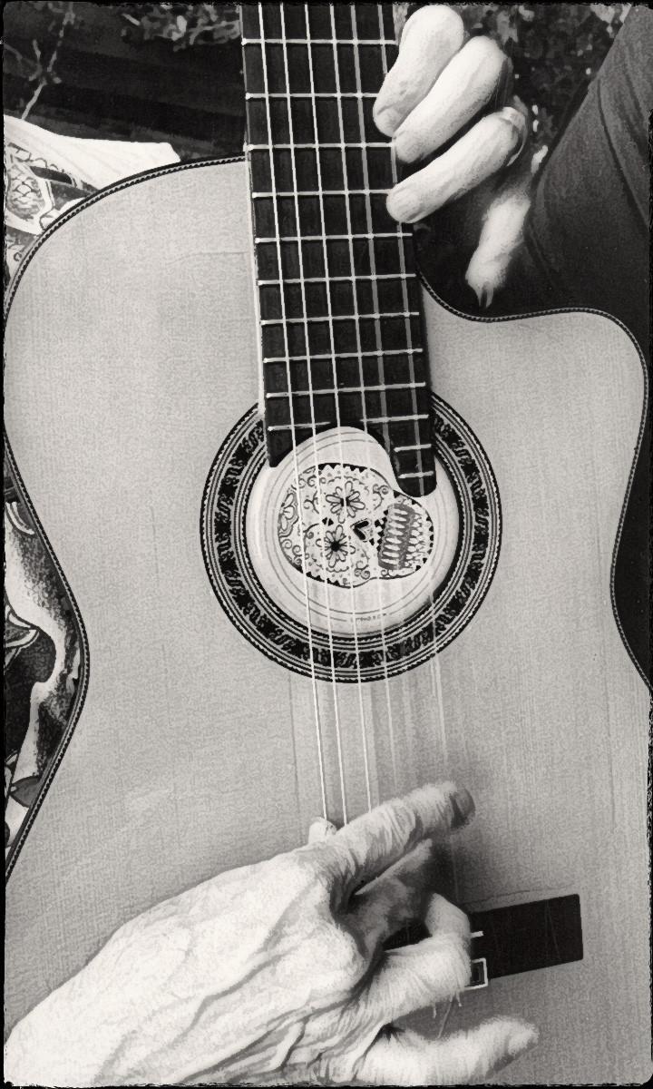 The Guitar 'n Me