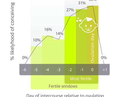 How Long Does My Fertile Window Last?