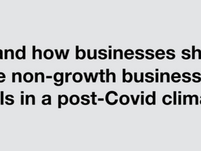 Why and How Businesses Should Create Non-Growth Business Models in a Post Covid-19 Climate