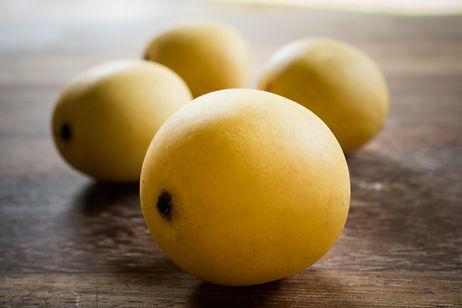 Marula Frucht