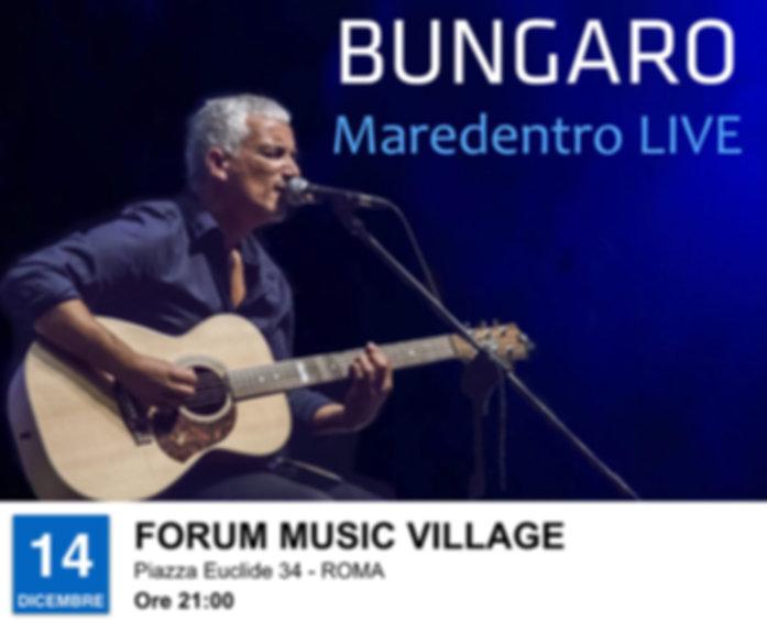 BUNGARO LOCANDINA 2.001.jpeg