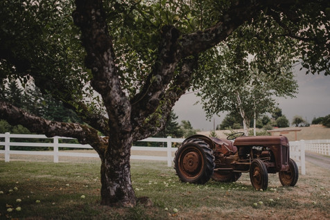Old tractor at the ranch