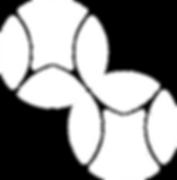 Dual Ball Clubs logo white.png