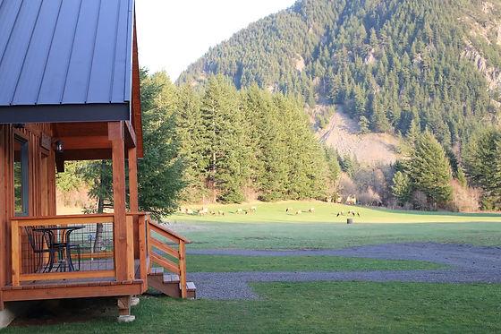Wind Mountain Ranch Wildlife
