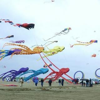 Kites2.png