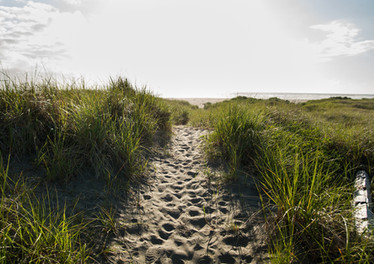 Pathway to the Beach from the Grey Gull