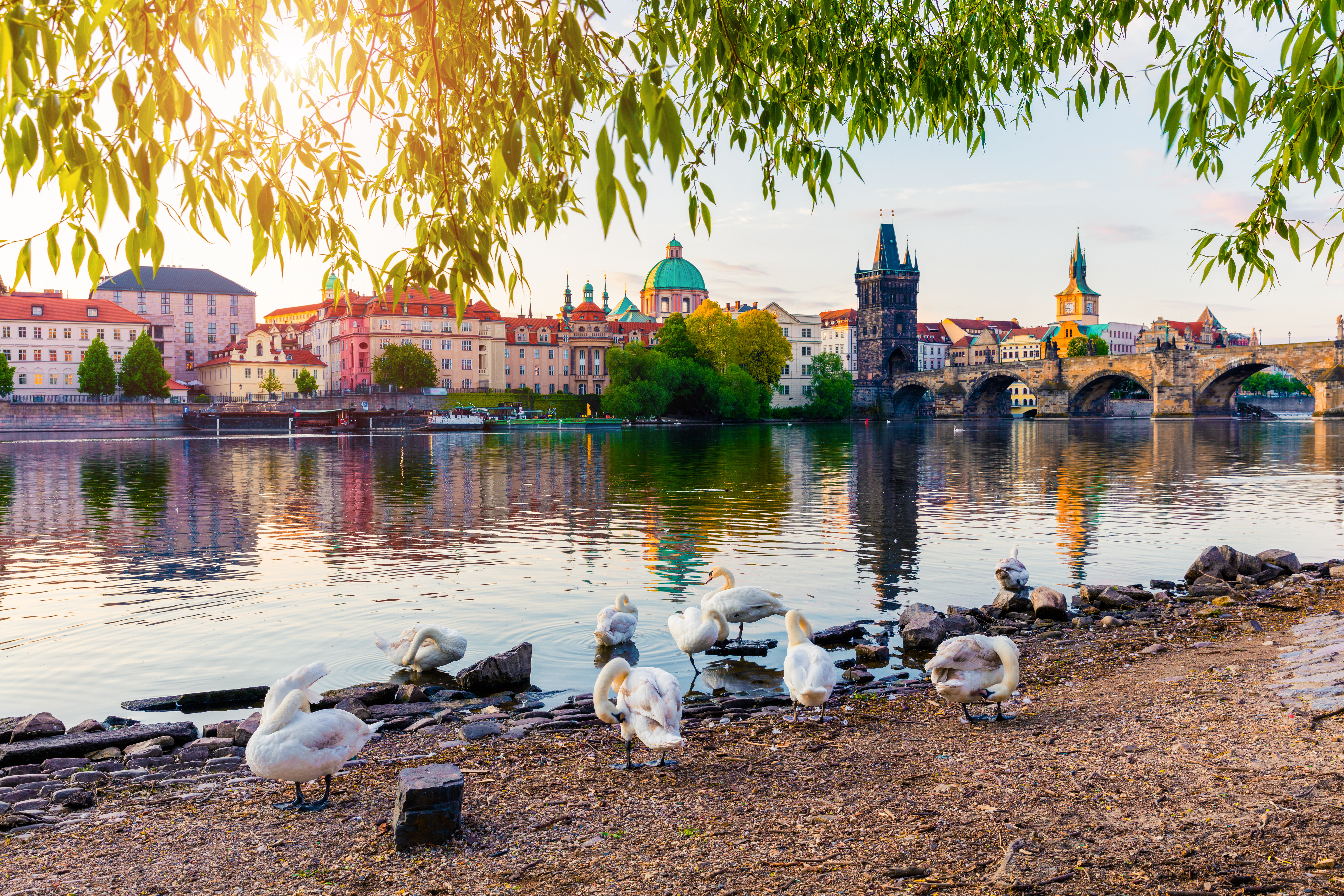 Prague: Traditionally Modern