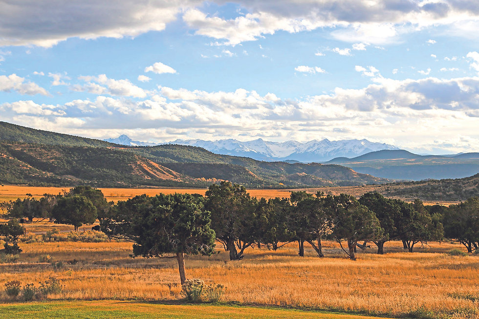 Buckhorn Mountain Ranch, Represented by