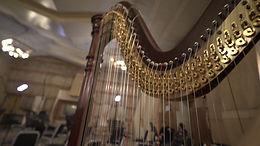 Harp Closeup.JPG
