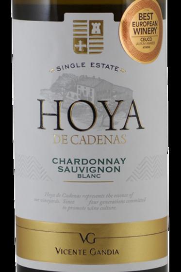 Droge Witte Wijn: Hoya de Cadenas Chardionnay Sauvignon Blanc