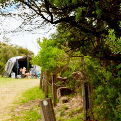 Unpowered Campsites