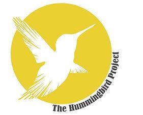 humming bird project.jpg