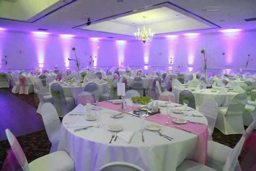 Light-Pink-Uplighting