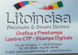 Litoincisa