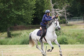 Tir à l'arc à cheval , arc cheval