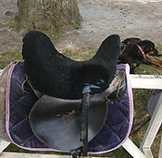 hongroise Griffin HBA Saddle.jpg