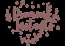 logo premiers instants Internet.png